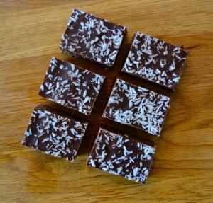 Rawfood chokladrutor